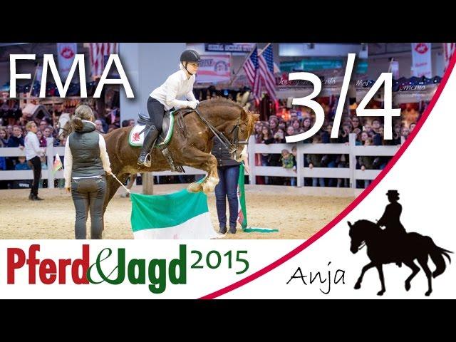 [FMA] Pferd & Jagd Messe 2015 - Tag 3 / 4 - Hinter den Kulissen