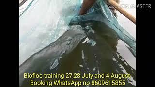 Live biofloc training 28 July 2019 successfully - Biofloc fish