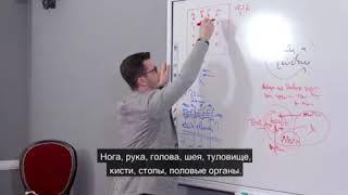 Набор фактов и реальность, А.В. Курпатов