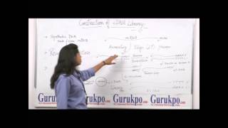 cdna library b sc m sc by mrs deepika rathore