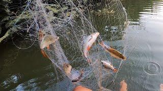 Hai tay lưới đầy cá!