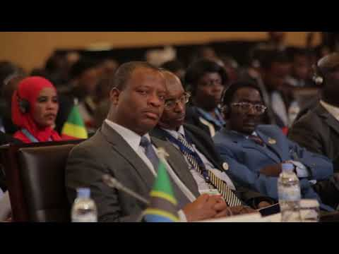 African Union's Executive Council Eighteen Extraordinary Session| Kigali, 19 March 2018​