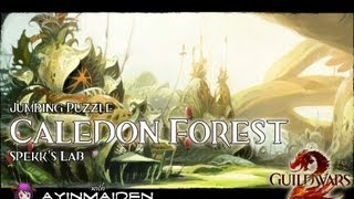 ★ Guild Wars 2 ★ - Jumping Puzzle - Caledon Forest (Spekks's Laboratory)