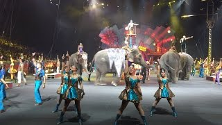 Highlights from Ringling Bros. Circus Xtreme tour