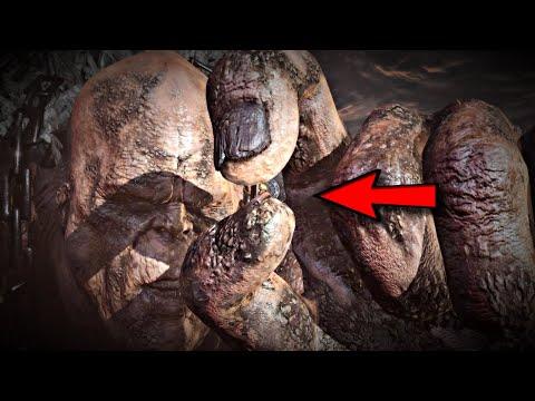 TITANS... not a myth!