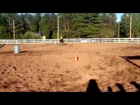 Sarah and Ozzie barrels May 19th 2015 fun show Triple D ranch
