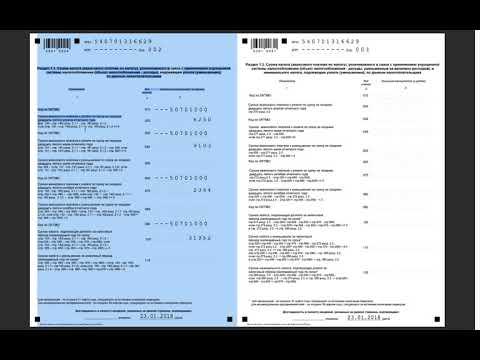 Заполнение декларации ИП на УСН 6% за 2018 год
