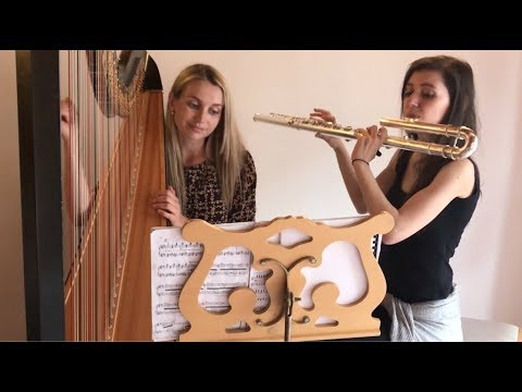 15 second harp and the Mars Bass Flute Project  compositions - Olivia Jageurs and Daniela Mars