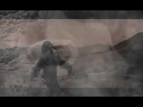 Marlene kuntz - La libertà di Giorgio Gaber dal ritornello
