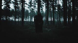 Смотреть клип Orbit Culture - The Shadowing