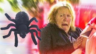 Огромный паук пугает людей в парке | Пранк | Подстава