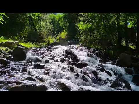Расслабляющий Звук Горной Реки в Приэльбрусье - 8 часов