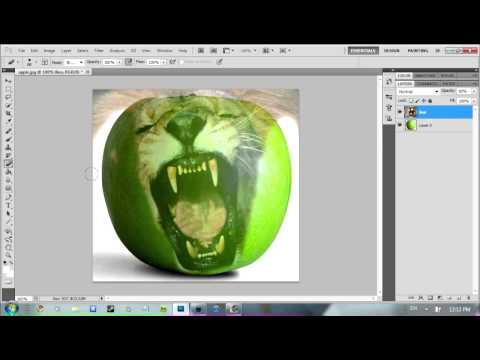 Adobe Photoshop; Photo Manipulating; Apple And Lion