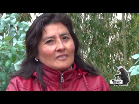 Corporación Arias & Familia - Roque Arias - Mix de Huaynos 1: Recuerdos de amor, tristezas y melancolías, solo he salido, ...
