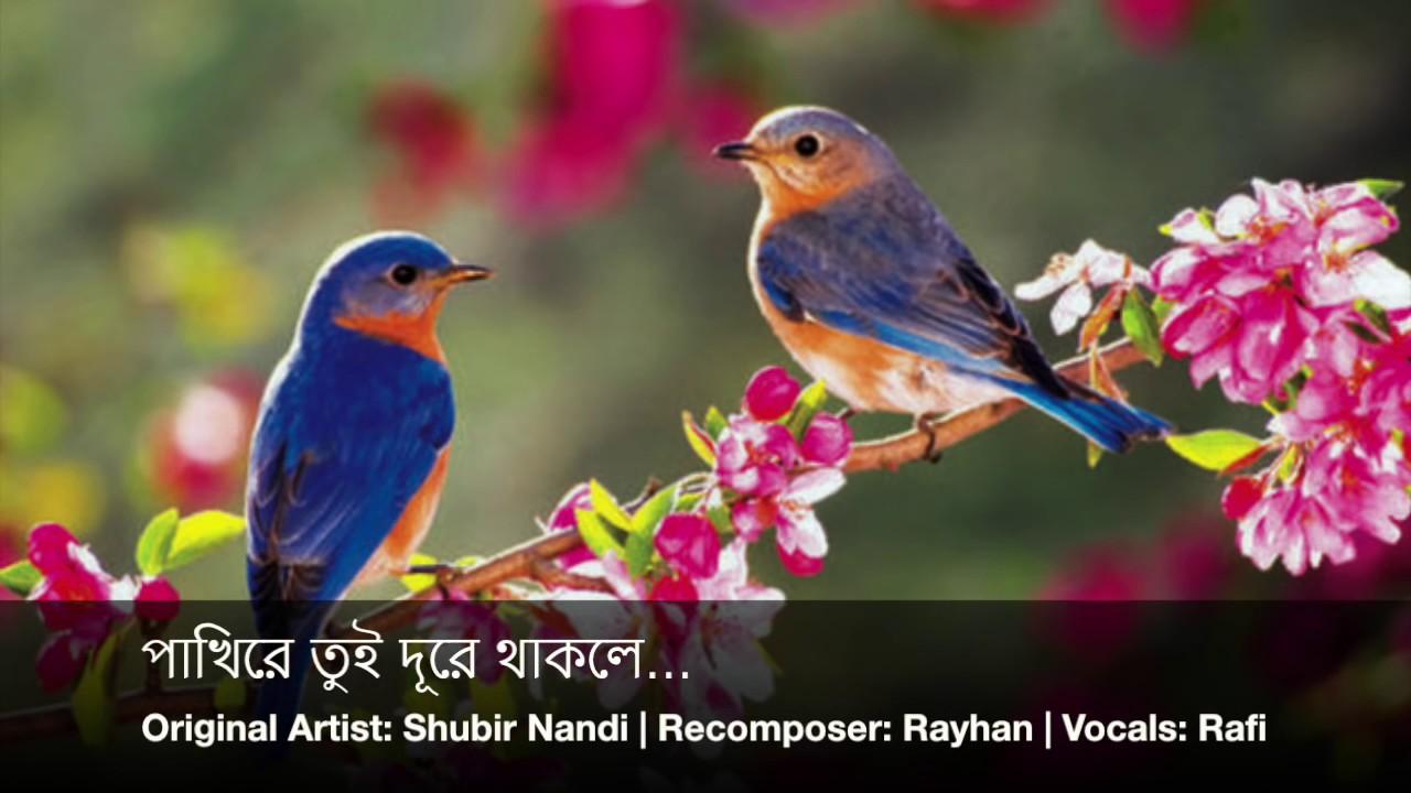 Bangla song pakhi re tui dure thakle free download.