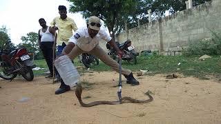 Sagar snake society Telangana