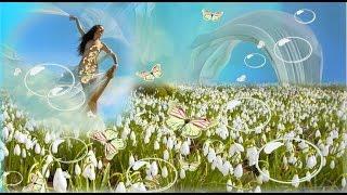 Весна пришла Самое красивое видео о Пробуждении природы