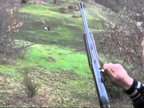 30-06 Benelli Carabine - extremely accurate