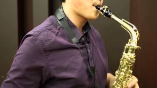 VNeck Vandoren saxophone straps