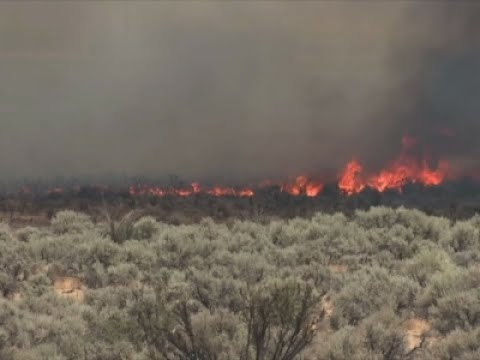 Raw: Multiple Fires In Northern Calif., Nevada