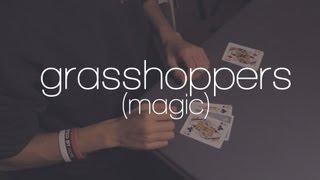 Grasshoppers - Paul Harris