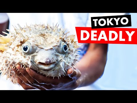 Eating Toxic Blowfish In Tokyo W/ Im Sparkzz