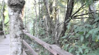 Tips & Bits por Iori - Turismo en Neltume