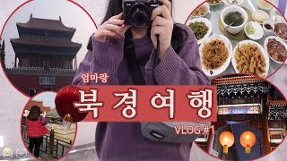 VLOG.엄마랑 북경여행#1 천안문광장/자금성/왕부정거…