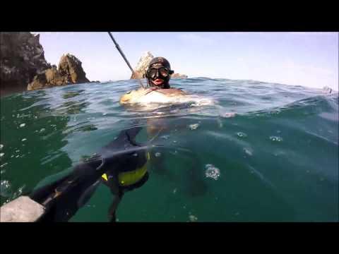 Pesca Submarina en Mollendo cabrillas y otros peces
