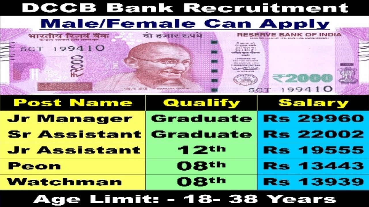 District central co operative bank recruitment 2017 latest bank district central co operative bank recruitment 2017 latest bank jobs 8th 12th pass jobs falaconquin