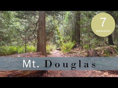 Hiking Mount Doug  Chatty Catch Up - Vlog 137