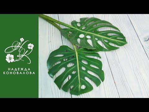 Листья монстеры из фоамирана