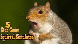 #Squirrel Simulator - By Avelog Simulation - 5 Star Game on Google Play
