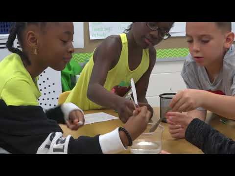 Dutch Fork Elementary School Academy of Environmental Sciences