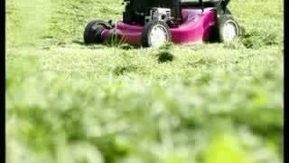 Hans Söllner - Der Rasenmäher