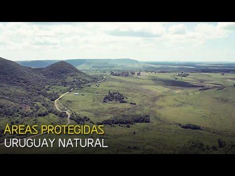 El gobierno busca promover el turismo en áreas protegidas