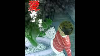 經典網路歌手-卡卡 (Carlokas) - 36 首感人金曲串燒 (2007-2011)