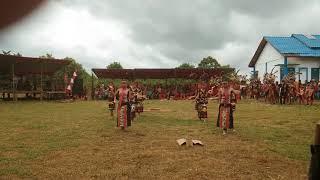 Download Tarian Numbuk Padi - Gawai Dayak Linoh di Riam Kijang,  sungai Tebelian,  Sintang