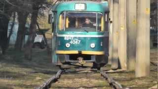 Трамвай тоже рельсовый транспорт