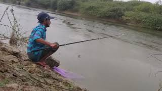Fish hunting || Fishing in rain