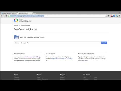 Pagespeed Insights by Google - Find Out Why Your Website Is Slow - Ranking Factor - WP Learning Lab