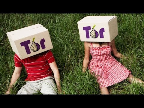 Update of tor browser hyrda tor browser для сайтов на которые запретили hyrda