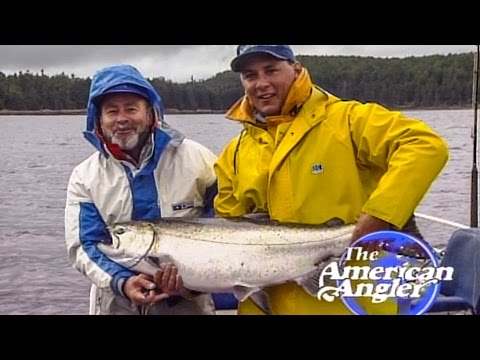 Fishing for huge salmon, Peregrine Lodge part 1