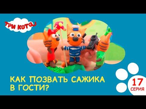 Три кота. Как позвать Сажика в гости?   Выпуск №17 Развивающее видео для детей