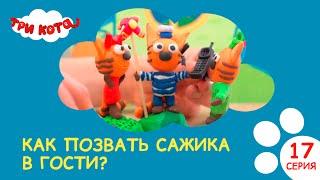 Три кота. Как позвать Сажика в гости? | Выпуск №17|Развивающее видео для детей