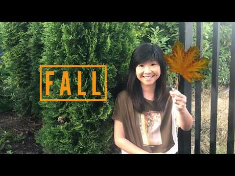 part-1-of-3-meanings-of-fall---god-our-heavenly-father-loves-the-lost