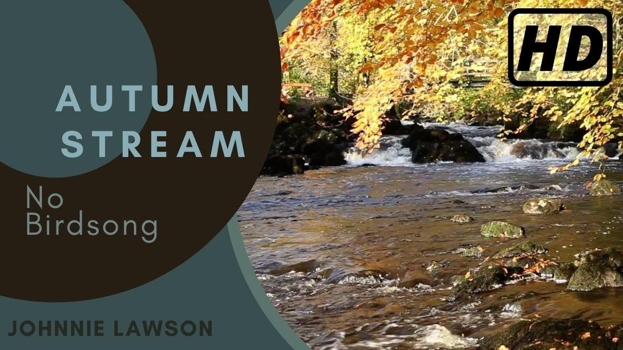 Image result for flow river peaceful