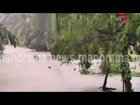 മഴയിൽ മുങ്ങി പാലക്കാട്;കടുന്തുരുത്തിയിൽ വീടുകൾ മുങ്ങി|Palakkad Kadumthuruthi
