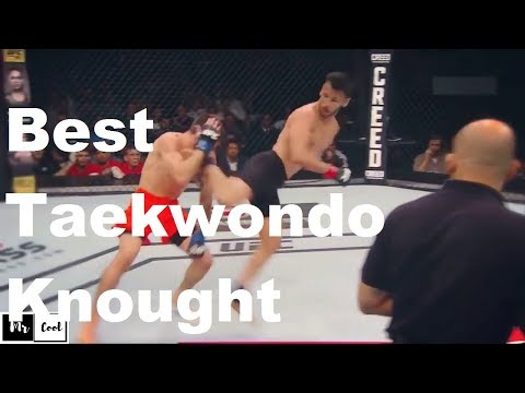 Best Taekwondo Knockouts KO in UFC - MMA Fighter