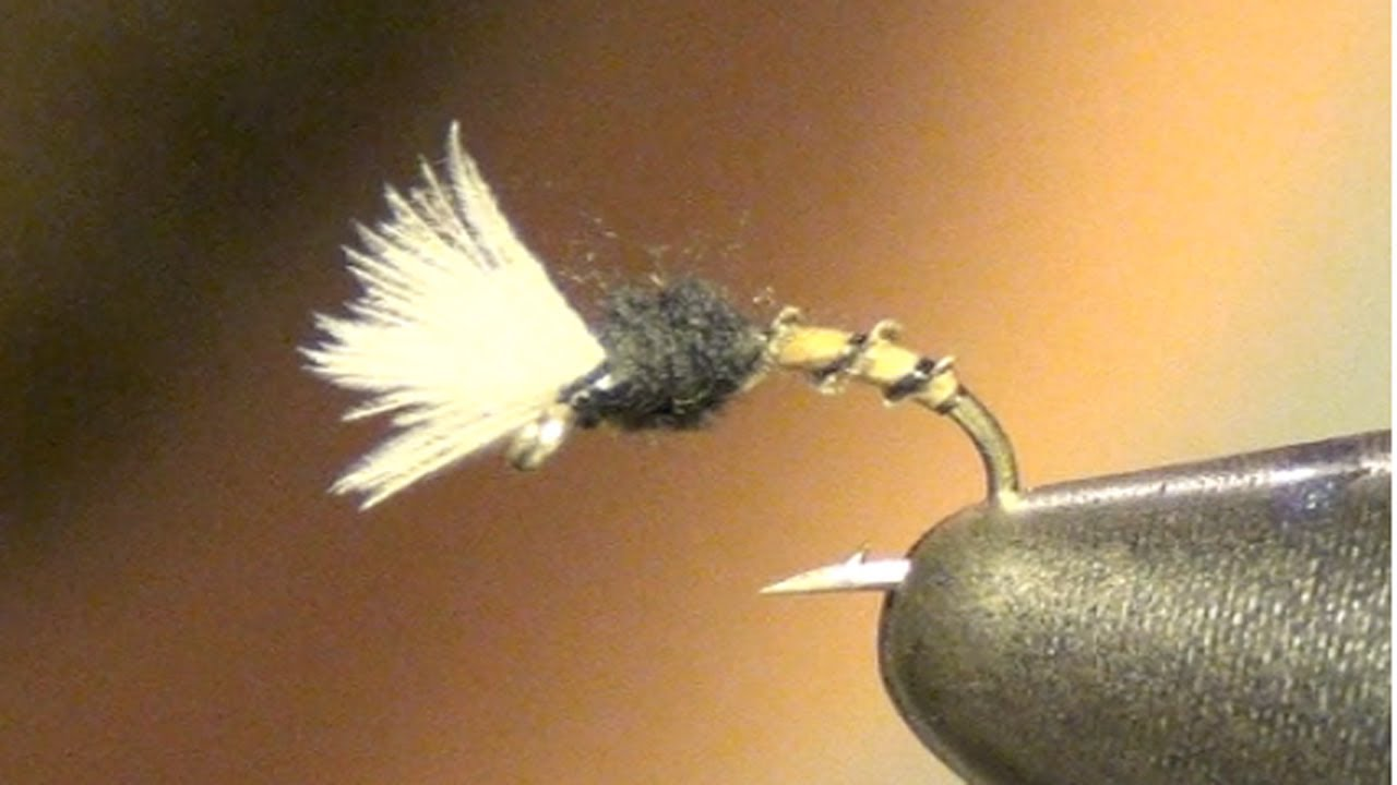 Midge Fly Patterns Interesting Design